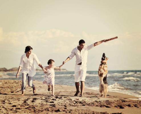 Rechtsschutz für Tierhalter: Familie rennt am Strand auf dem Sand und spielen mit dem Hund.